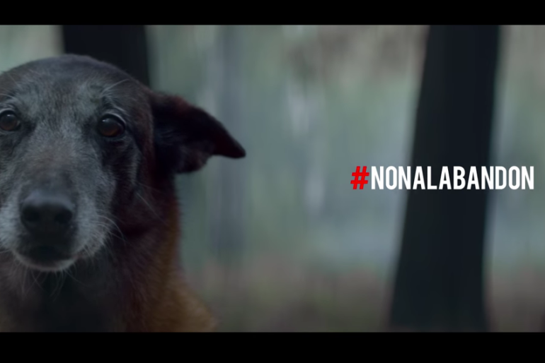 Stop Abandoning Dogs – Social Campaign by Fondation 30 Millions d'Amis