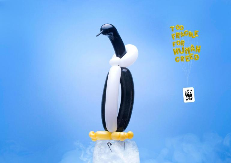 Too fragile for human greed – WWF Social Campaign