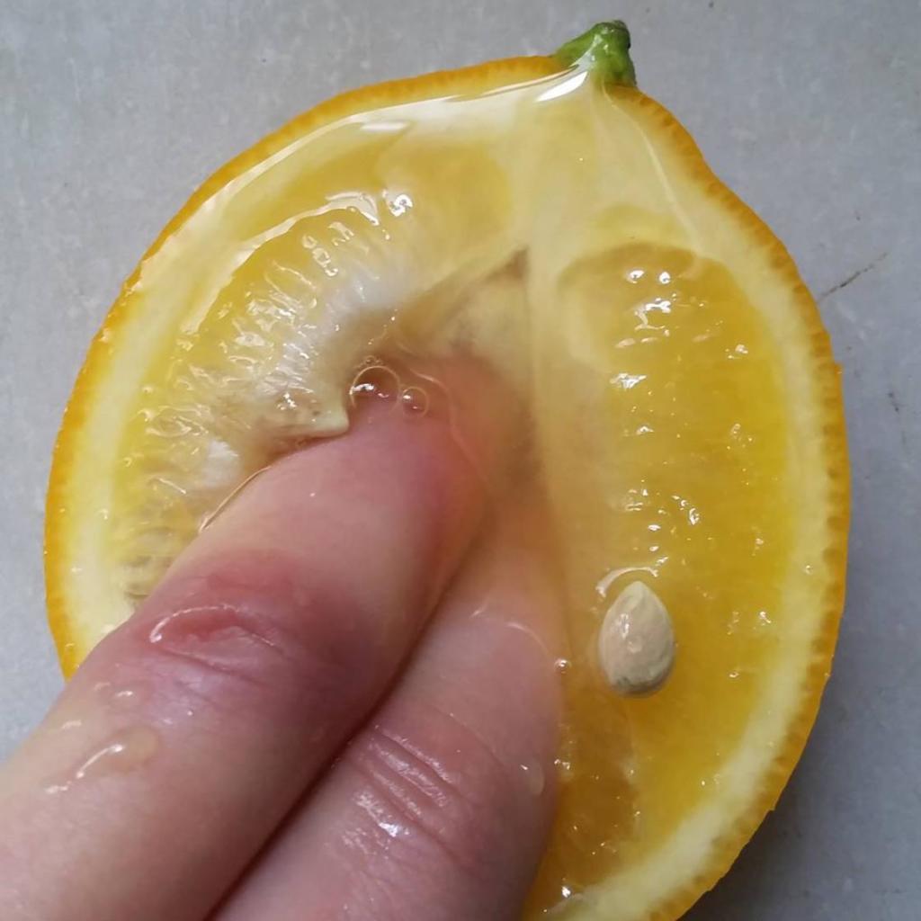 food-porn-stephanie-sarley-5