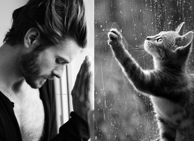 Sexy Men & Lovely Cats in Similar Poses