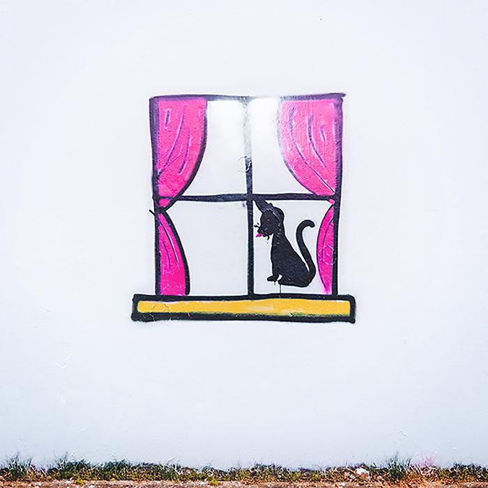 swastika-street-art-paintback4